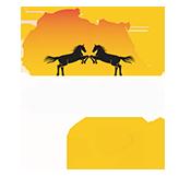 African Confederation of Equestrian Sport